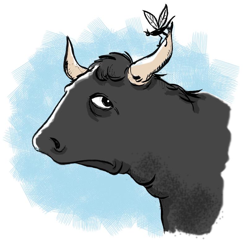 it's all bull
